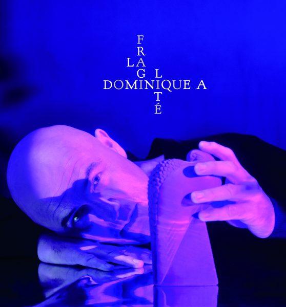 Jeu terminé –  5×1 CD de la Fragilité de Dominique A